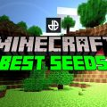 How to Get the Seed of a Minecraft Server?